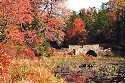 Autumn Bridge Poster by David Rucker
