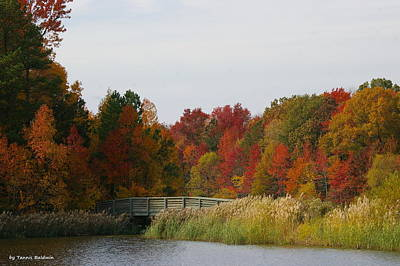 Poster featuring the photograph Autumn Bridge by Tannis  Baldwin