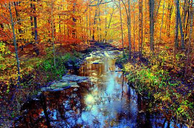 Autumn Colors 10 Poster