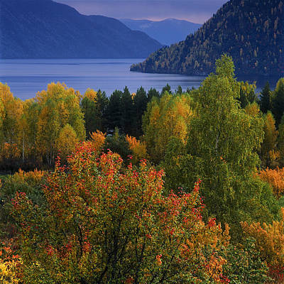 Autumn Colors Poster by Pavel  Filatov