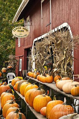 Autumn Farm Stand  Poster by John Greim
