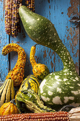 Autumn Gourds Poster by Garry Gay