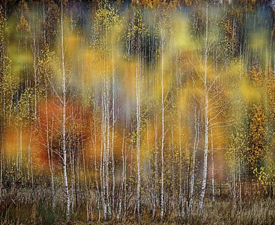 Autumn Impression Poster
