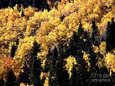 Autumn In Colorado Painting Poster