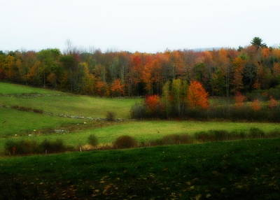 Autumn In Maine Poster by Josie Dupuis