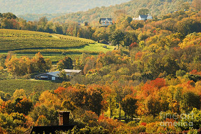 Autumn In The Litchfield Hills Connecticut Usa Poster