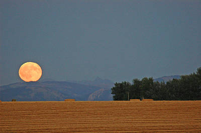 Autumn Moonrise Over Montana's Bridger Mountains Poster by Bruce Gourley