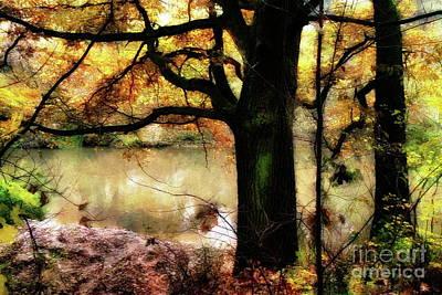 Autumn Oak Tree Poster by Dariusz Gudowicz