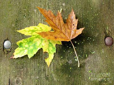 Autumn Pair Poster