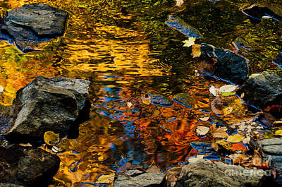 Autumn Reflections Poster by Cheryl Baxter