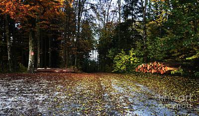 Autumn Scene Poster by Bruno Santoro