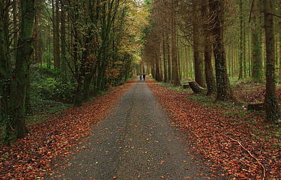 Autumn Stroll. Poster