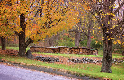Poster featuring the photograph Autumn Woodpile by Tom Singleton