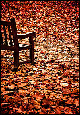 Poster featuring the photograph Autumnal Colours by Lenny Carter