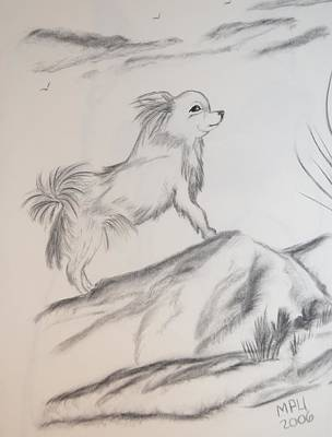 Aye Chihuahua Poster by Maria Urso