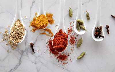 Ayurvedic Warming Spices Poster by Shana Novak