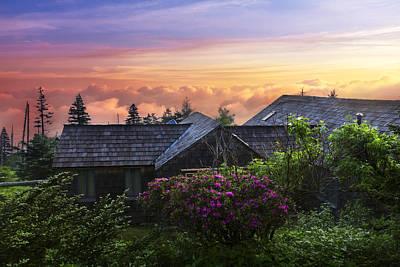 Azaleas At Sunrise Poster