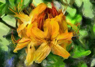 Azaleas In Bloom Poster