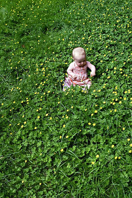 Baby In A Field Of Flowers Poster