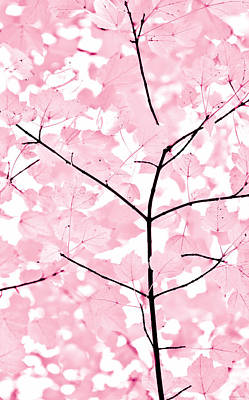 Baby Pink Leaves Melody Poster