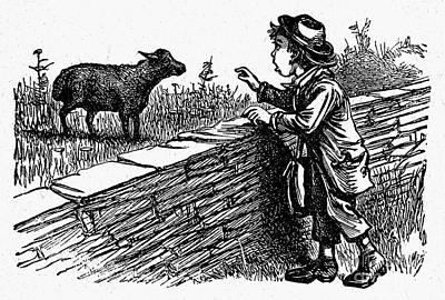 Bah, Bah, Black Sheep Poster by Granger