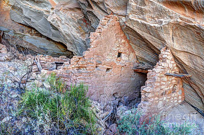 Ballroom Anasazi Indian Ruins - Butler Wash - Utah Poster by Gary Whitton
