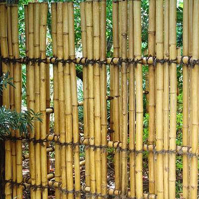 Bamboo Gate Poster by Florene Welebny