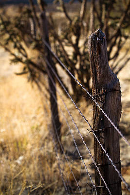 Poster featuring the photograph Barbed Wire by Jason Smith