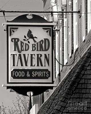 Poster featuring the photograph Barhopping At The Red Bird 1 by Lee Craig