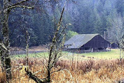 Barn Near The Dosewallips River Poster by Marie Jamieson
