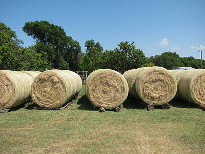 Bayling Hay In Texas Poster by Shawn Hughes