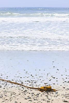 Beach Detail On Pacific Ocean Coast Poster