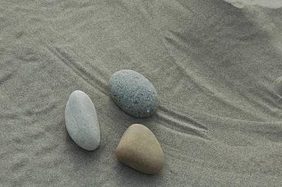 Beach Rocks Still Life Poster