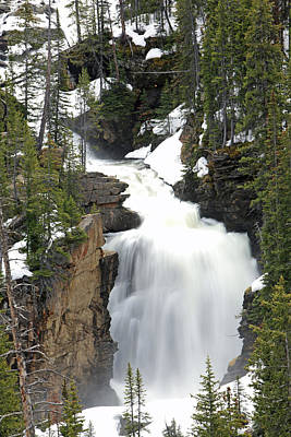 Beartooth Falls In The Shoshone Poster