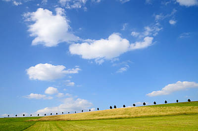 Beautiful Summer Landscape With Blue Sky And Clouds Poster by Matthias Hauser