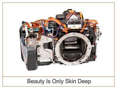 Beauty Is Only Skin Deep Poster