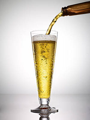 Beer On White Background Poster