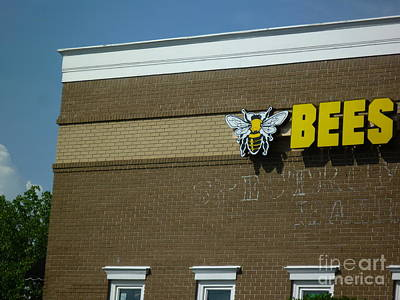 Poster featuring the photograph Bees On Building by Renee Trenholm