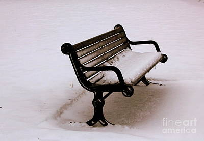 Bench  In Winter Poster