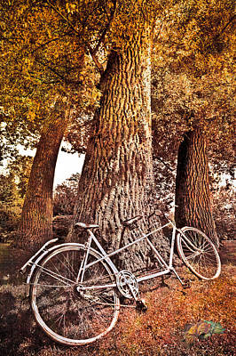Bicycle Built For Two Poster by Debra and Dave Vanderlaan