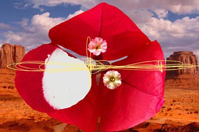 Big Red Desert 1 Poster