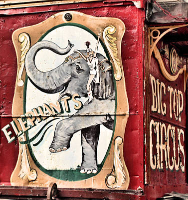 Big Top Elephants Poster by Kristin Elmquist