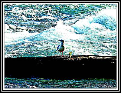 Bird And The Sea Poster by Anand Swaroop Manchiraju