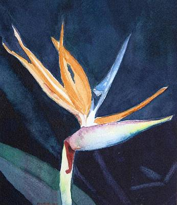 Bird Of Paradise Poster by Charlotte Hickcox