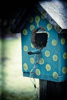 Birdhouse Memories Poster