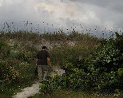Birding The Dunes Poster