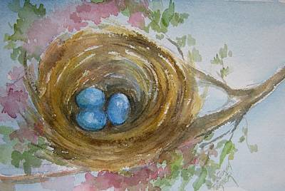 Birds Eggs In A Nest Poster by Gloria Turner