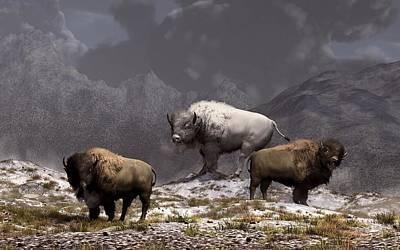 Bison King Poster