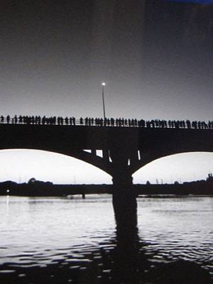 Black And White Austin Texas Bat Bridge Poster
