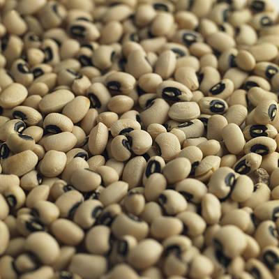 Black Eyed Beans, Natural Food Ingredient Poster